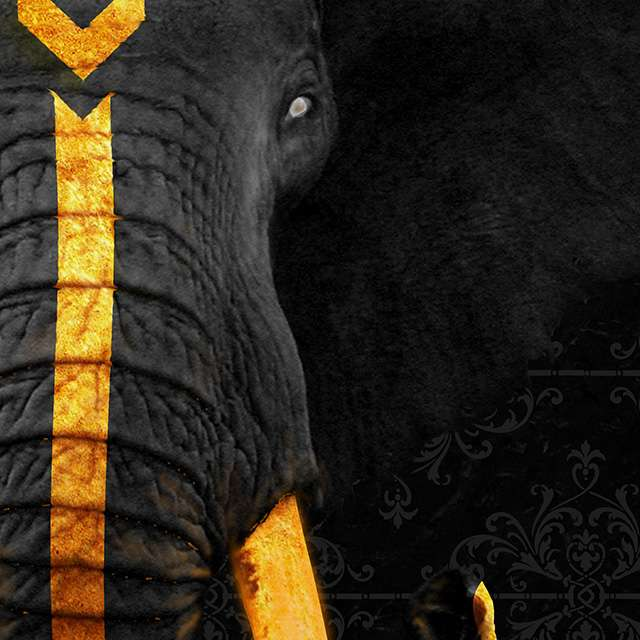 Elefante Rei